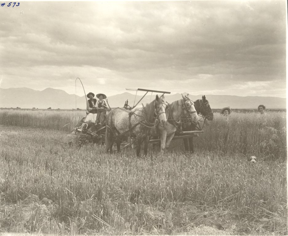 Caption: Homesteaders, Southwest Montana, Credit: Beaverhead County History Museum