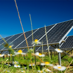 Caption: Communities, families, and businesses can benefit by co-owning solar units., Credit: http://buildipedia.com