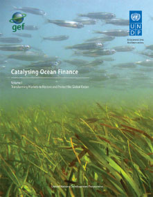 Caption: Catalyzing Ocean Finance Vol. II, Credit: GEF/UNDP