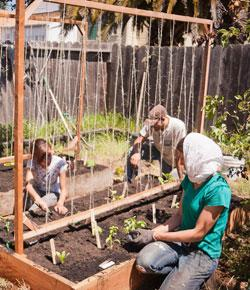 Caption: Oakland residents tend to a backyard garden as part of the annual Throw Down for the Town service festival. , Credit: the Ella Baker Center. Photo by David Hanks.