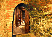 Caption: Seth's Wine Cellar, Credit: Seth Shostak
