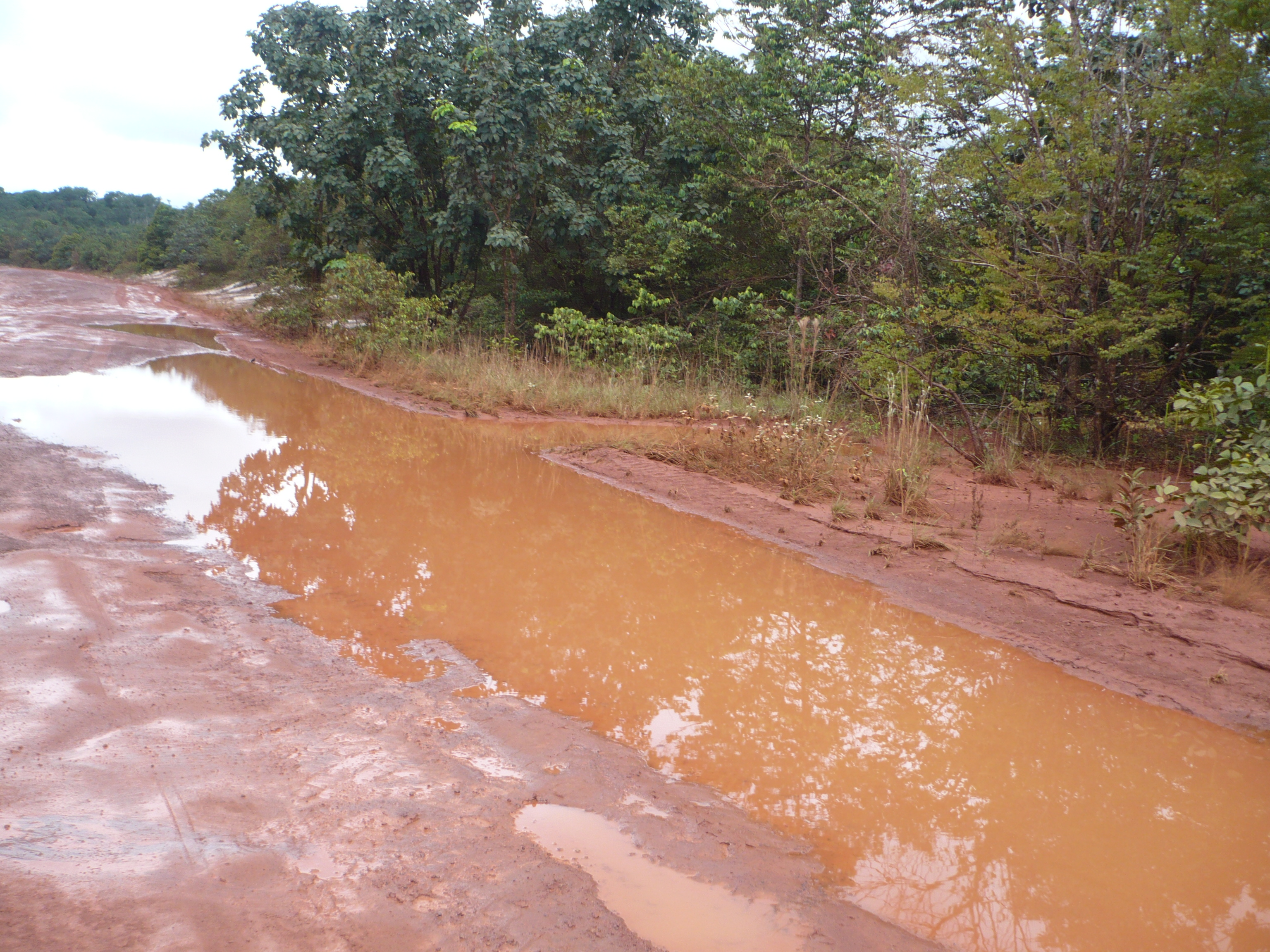 Caption: Weg in Guyana, Credit: Anton Foek