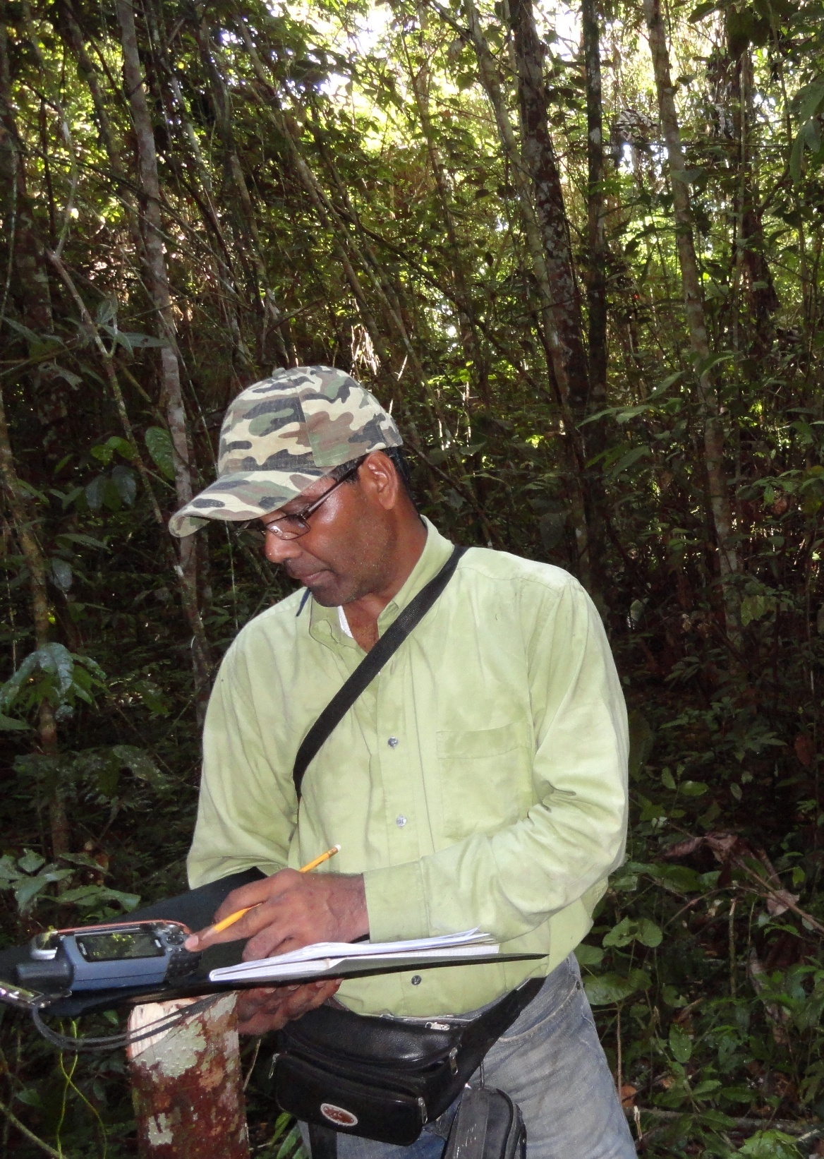 Caption: Mr Naipal at work in the rainforest, Credit: Anton Foek