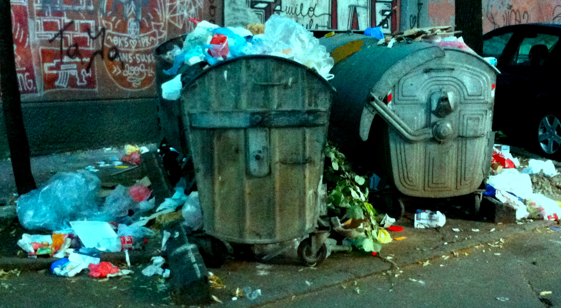"Caption: Smetnjak ""trashcan"", Credit: Constance A. Dunn"