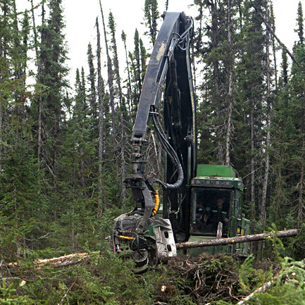 Caption: A feller buncher in the Boreal Forest , Credit: Greenpeace