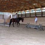 Carlisle_horse_small