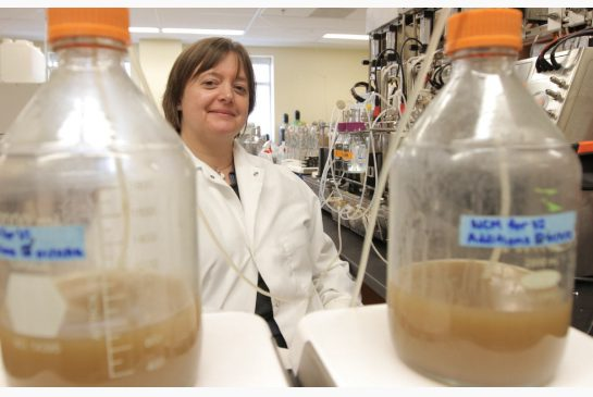Caption: Dr. Emma Allen-Vercoe standing by the robo-gut that creates RePOOPulate