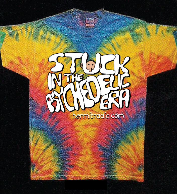 Stuck-in-the-psychedelic_small