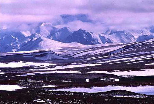 Caption: Toolik Lake, in Alaska's Arctic wilderness., Credit: Copyright John C. Wingfield