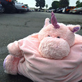 Pic_pillow-pet_small
