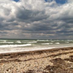 Caption: A windy day. Wood Neck Beach, Falmouth MA, Credit: Kasia Gladki