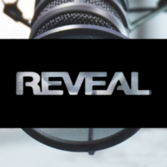 Reveal240px_small