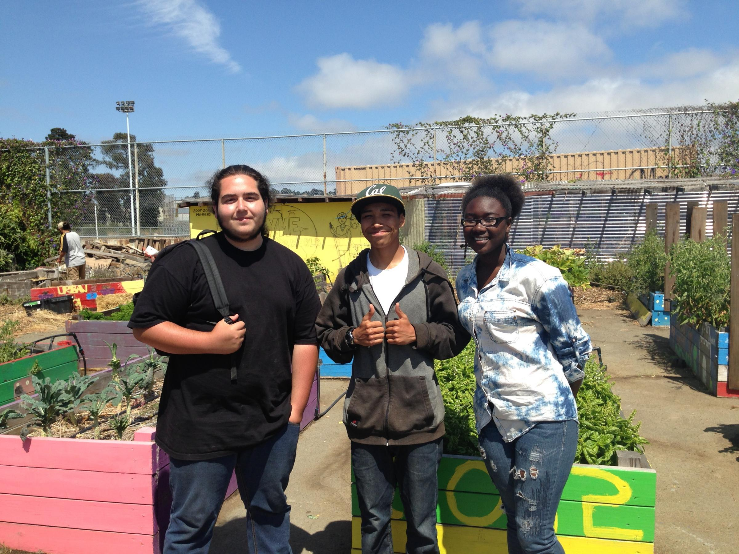 Caption: Urban Tilth summer apprentices Dante Ricardo, Carlos Hernandez, and Nikia Whittie in the Richmond High garden, Credit: Isabel Angell