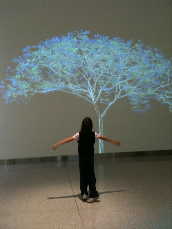 "Caption: Jennifer Steinkamp's video installation""Kelly 1"" at Cleveland Clinic, Credit: Courtesy of Cleveland Clinic"