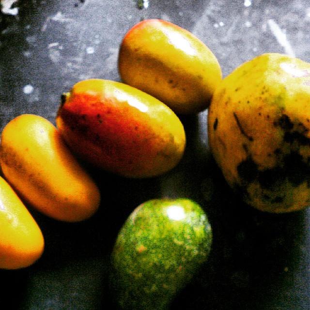 Caption: Rare Mangoes at a festival, Credit: Sandip Roy