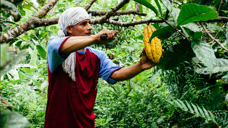 Caption: Colombian Farmer , Credit: Lush.co.uk
