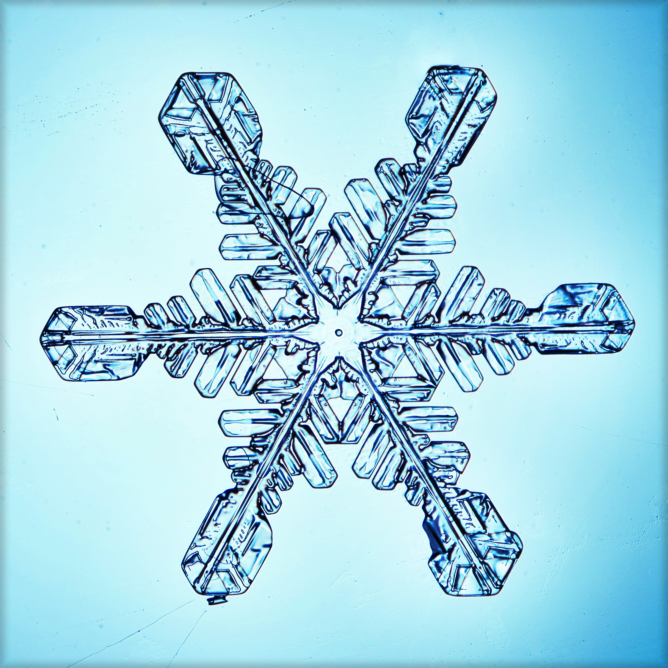 Caption: Snowflake science