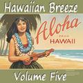 Hawaiianbreezevol5_small