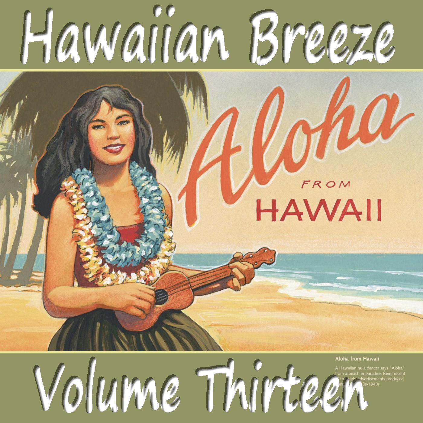 Hawaiianbreezevol13_small