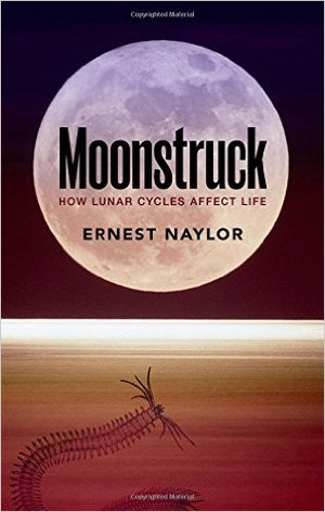 Caption: Ideas Books: Ernest Naylor, Moonstruck
