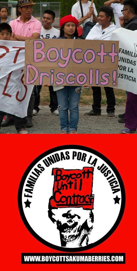 Caption: Farm Workers: Boycott Driscolls
