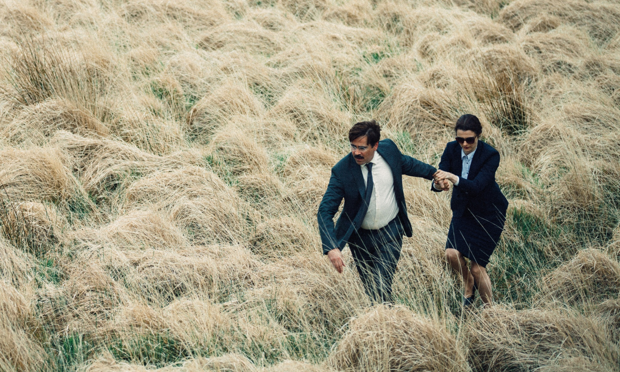 Caption: Colin Farrell and Rachel Weisz in 'The Lobster'