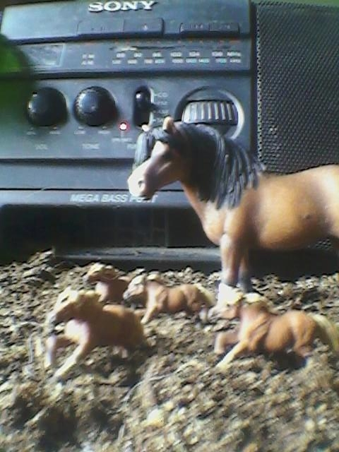 Caption: No more Prairie Home Companion ponies to ride, Credit: Susan Cook