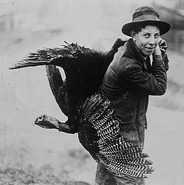 Caption: Thanksgiving Turkey., Credit: Source: Library of Congress.