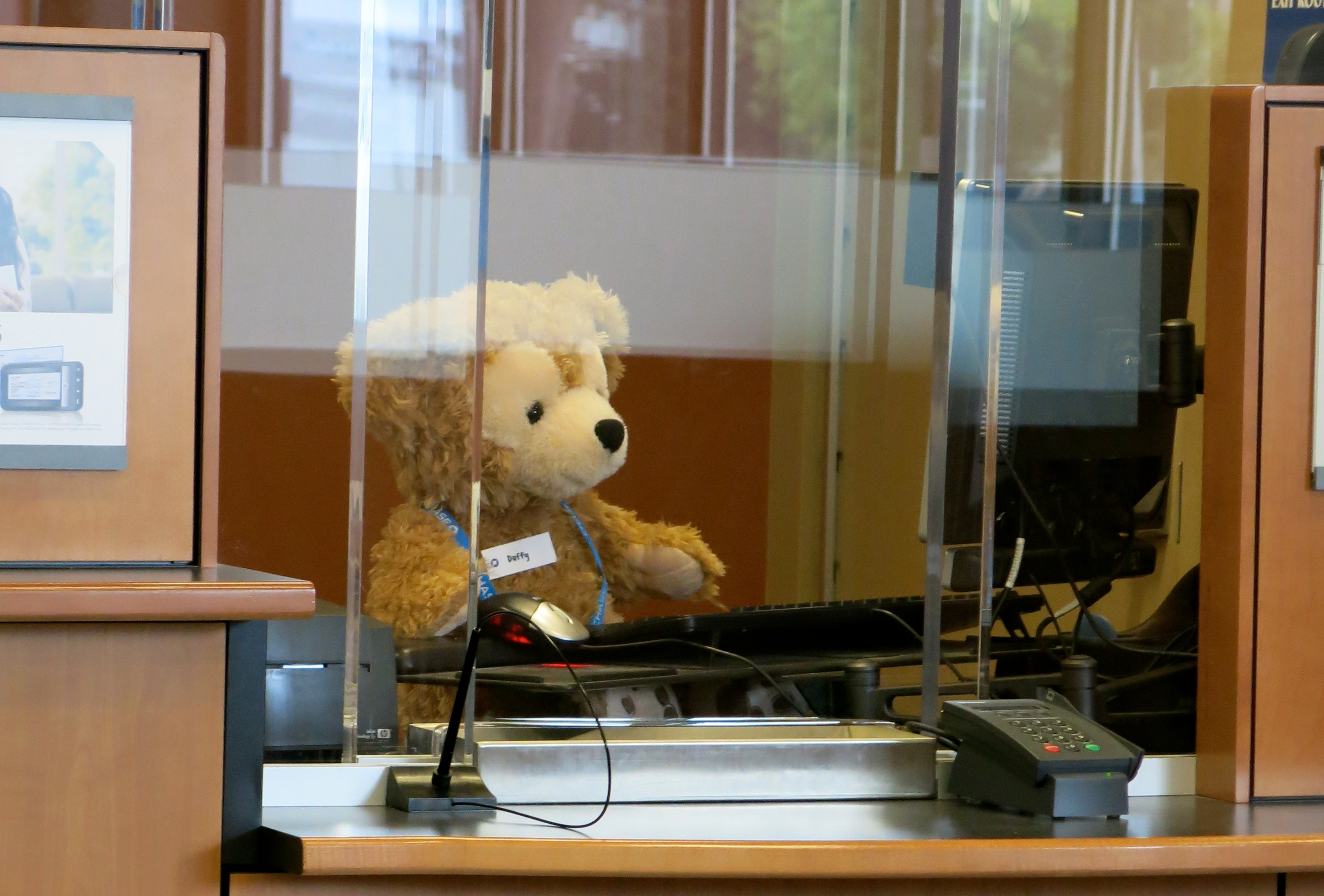 Caption: A new trainee works at a bank teller computer waiting for a new customer., Credit: Torbakopper/Flickr