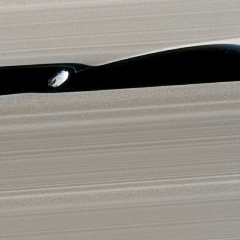 Caption: Cassini was able to capture its closest-ever view of Daphnis toward the end of its mission, during its F-ring orbit phase, when it passed between the F and G rings once per orbit. Daphnis is only about 8 kilometers across., Credit: NASA / JPL-Caltech / SSI / Ian Regan
