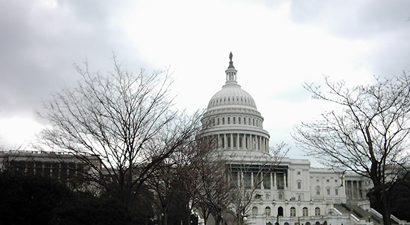 Caption: The US Capitol Building seen behind a fronting screen of winter-bare trees., Credit: Jessica/Flickr