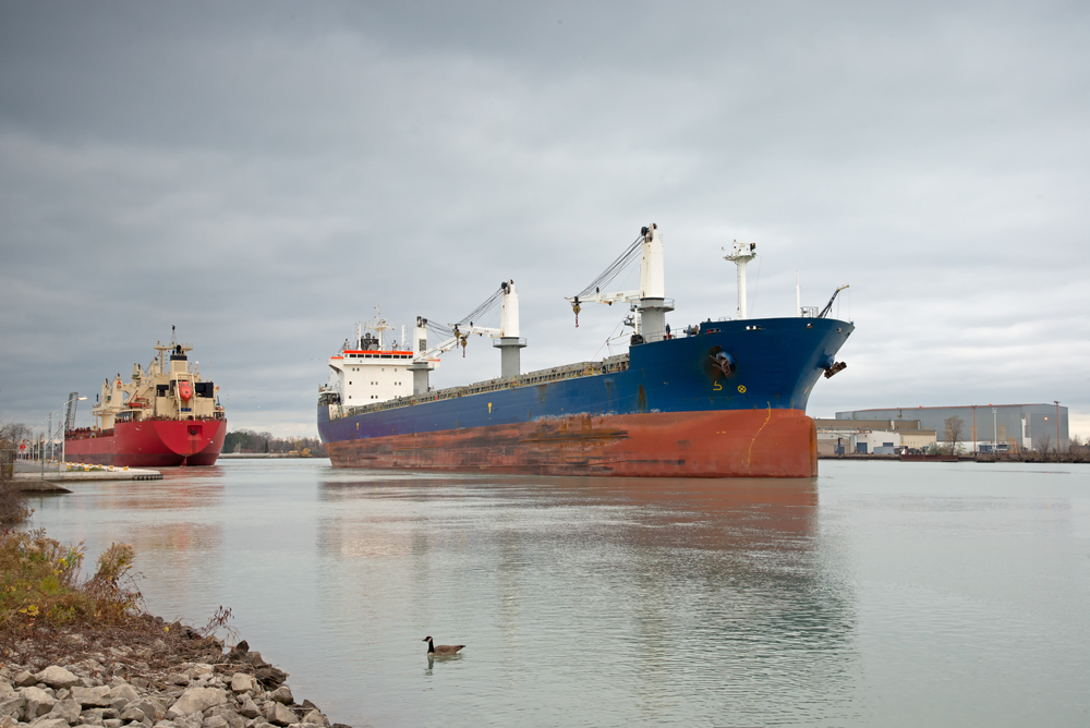 Caption: Two bulk carriers passing at the exit of Lock 1 on the Welland Canal., Credit: Jon Nicholls/Shutterstock