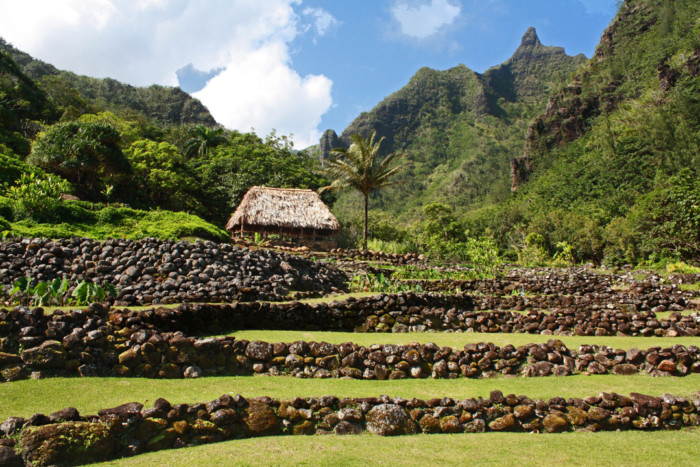 Caption: Limahuli Garden and Preserve is set in a verdant tropical valley on the north shore of the Hawaiian Island of Kaua`i, Credit: Courtesy National Tropical Botanical Garden
