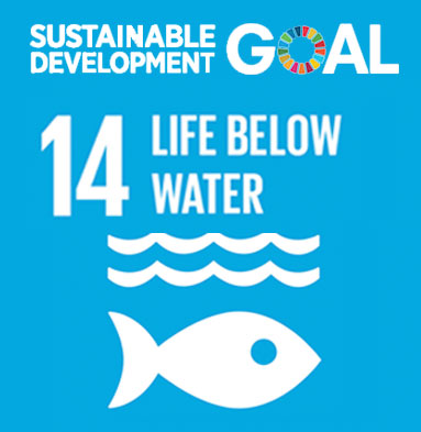"""Résultat de recherche d'images pour """"sustainable goal 14"""""""