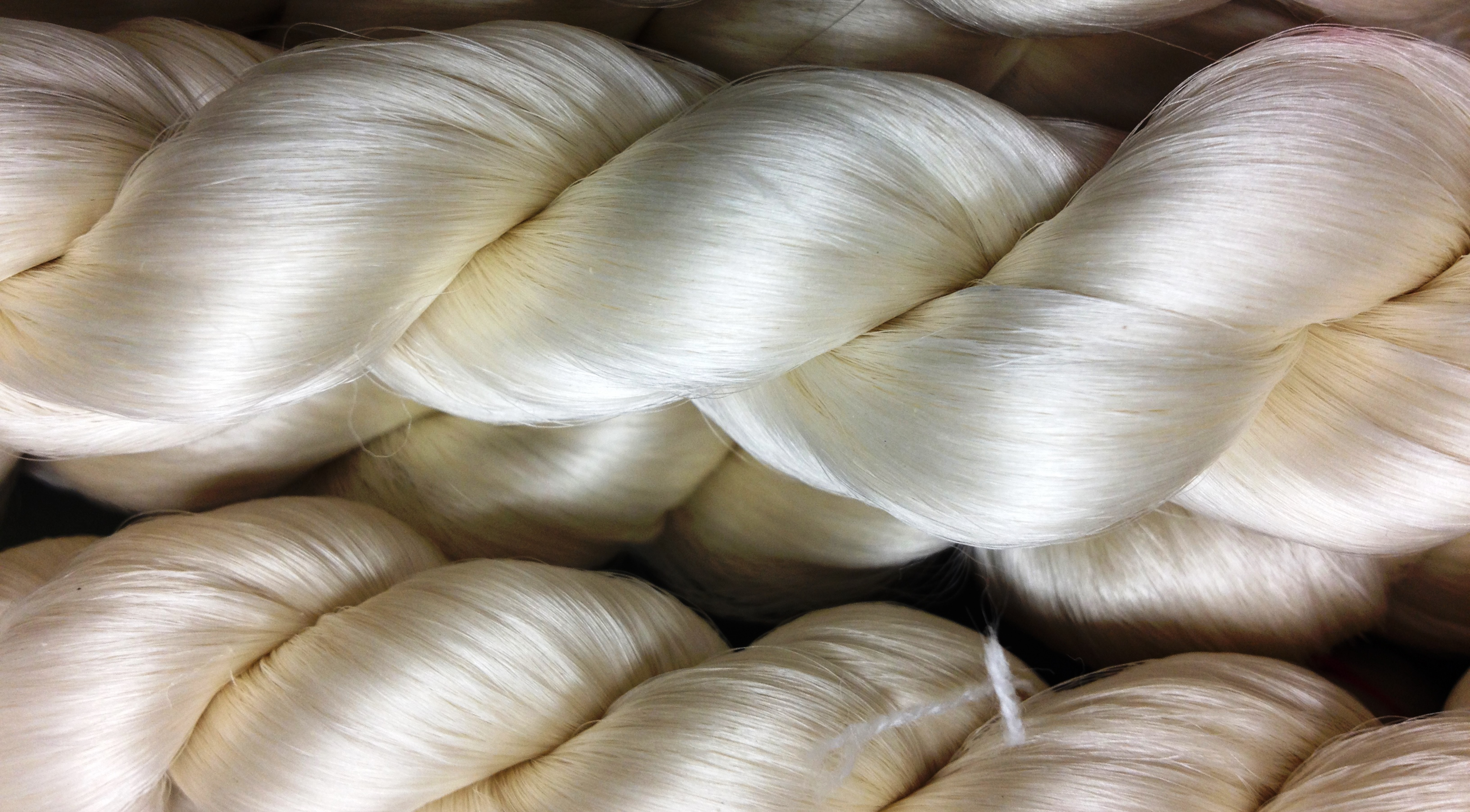 Caption: These silk threads are produced by silkworms but based on the protein spiders use to spin a web.        , Credit: Kraig Biocraft Laboratories
