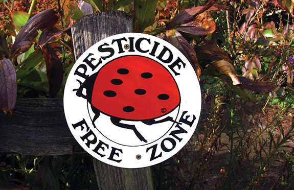 Caption: A bright sign featuring a red ladybug and the words 'pesticides free' sits in the sun., Credit: Seattle Parks/Flickr