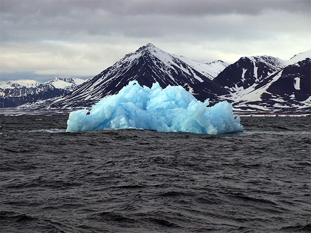 Caption: Glacial Ice growler. New Alesund, Svalbard, Norway, Credit: Thomas Hallermann/Marine Photobank