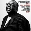Chestnut_small