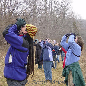 Caption: Citizen Birders, Credit: Scott More