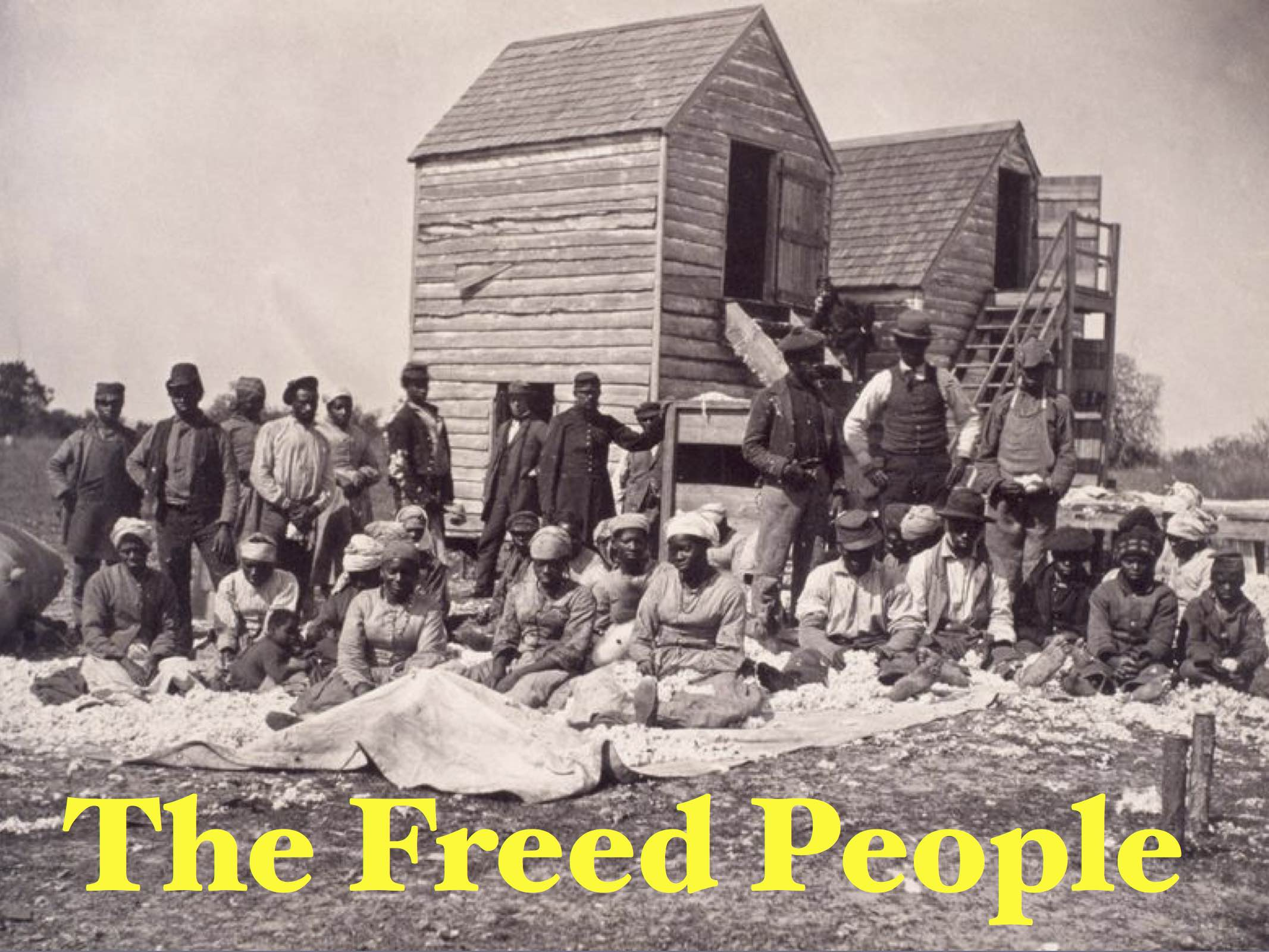 Freed_people_wp_small