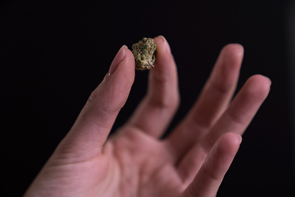 Caption: A woman's hand holds a small marijuana bud up for show., Credit: Stock Catalog/Flickr