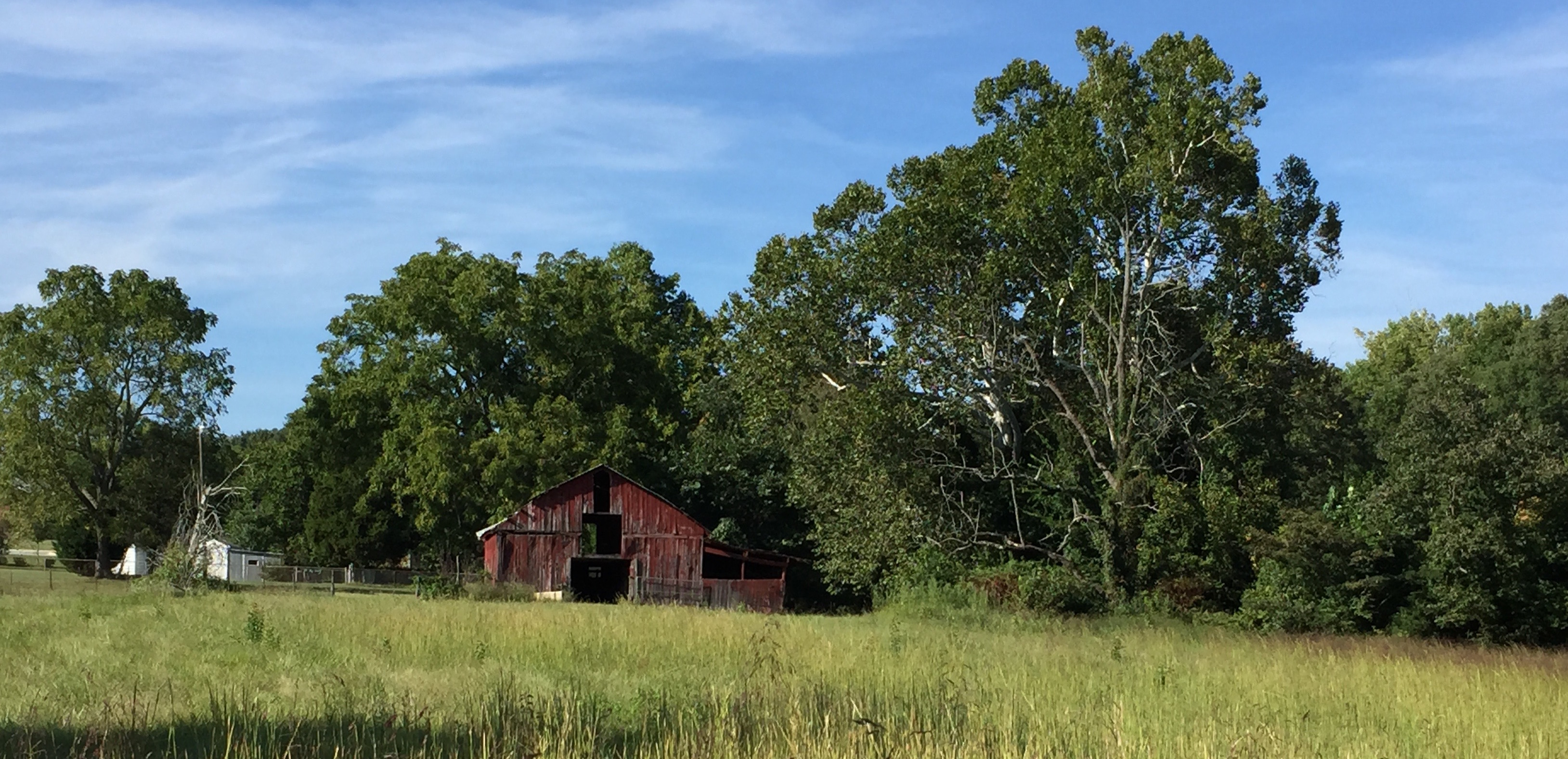 Caption: The remnants of a goat farm in Winston-Salem, NC.  This week's Across the Blue Ridge features a broad selection of regional music, plus a look ahead to a special event at the Blue Ridge Music Center on June 15.  , Credit: Paul Brown