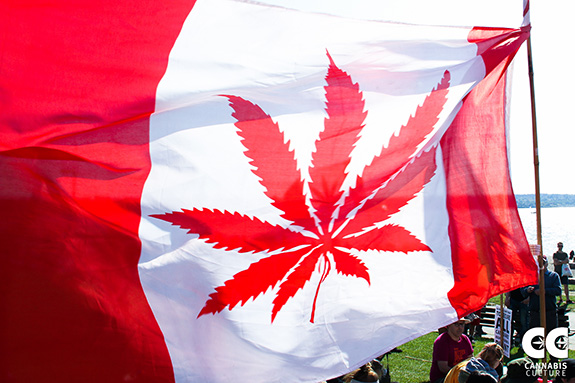 Caption: A red flag shows a marijuana leaf replacing the Canadian maple leaf., Credit: Cannabis Culture/Flickr