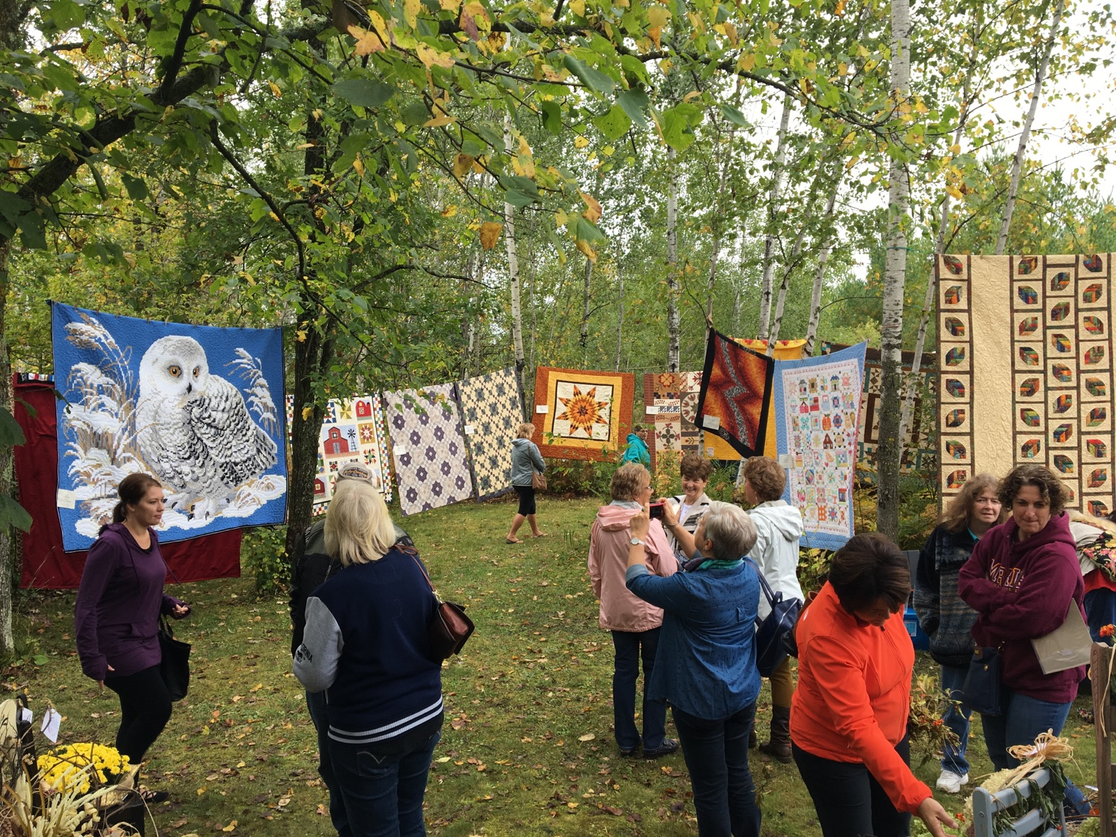 Caption: Quilts in Trees, Credit: Bonnie Lundorff