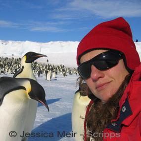 Jessica-meir-penguins-scripps-10-18-285_small
