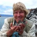 Dee-boersma-galapagos-penguin-chicks-penguin-studies-285_small