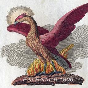 Phoenix-bertuch-285_small