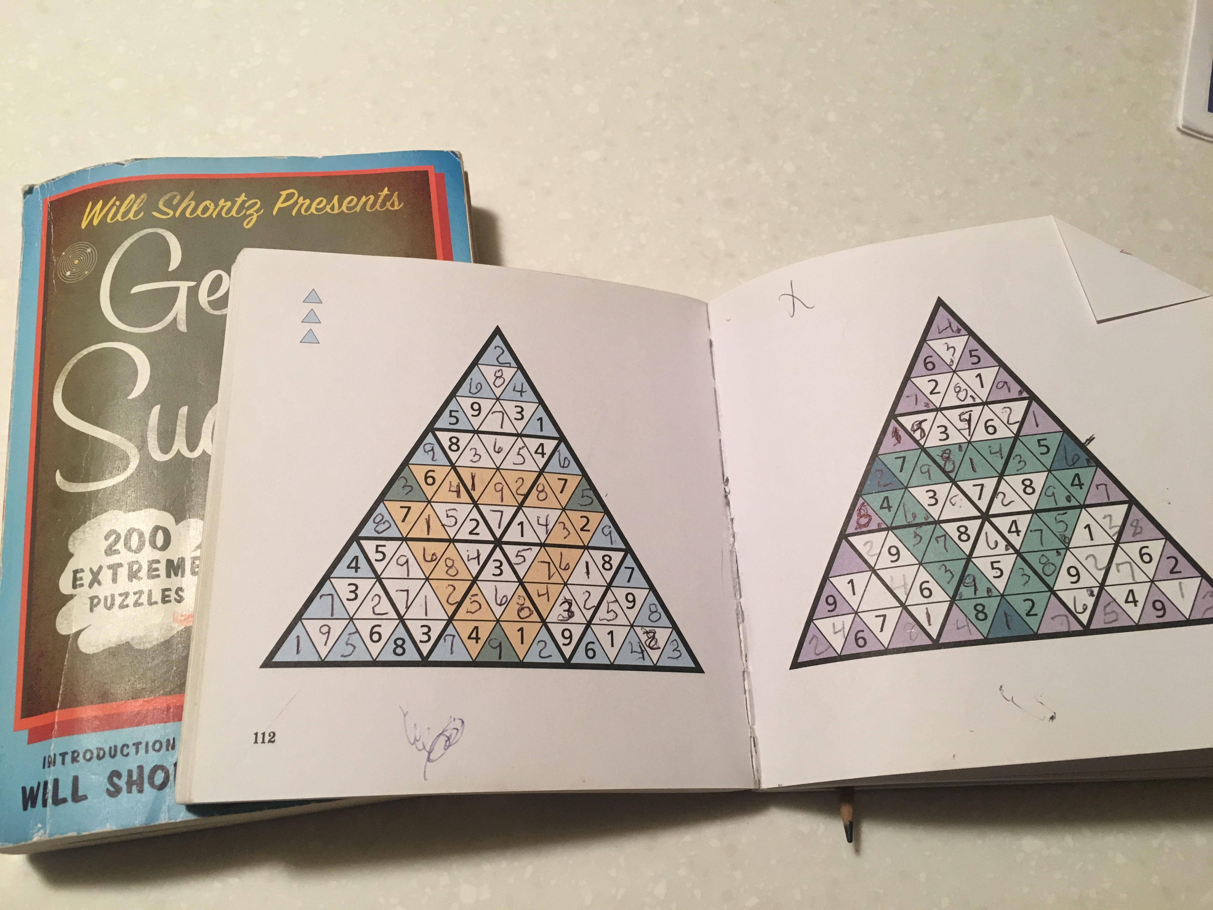 "Caption: Ted Davis' completed (and oddly shaped) Sudoku puzzles from a book called ""Tricky Sudoku"""