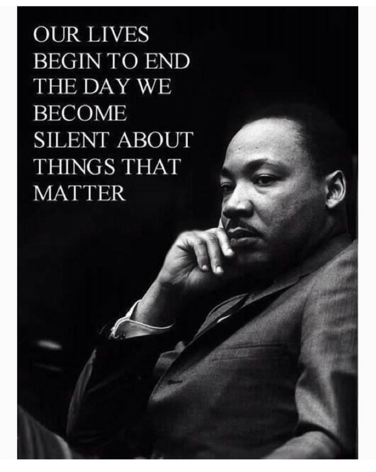 Dr_king_our_lives_begin_to_end_small