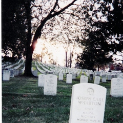 Caption: World War II graves at Arlington National Cemetary, Credit: L. Sponsler
